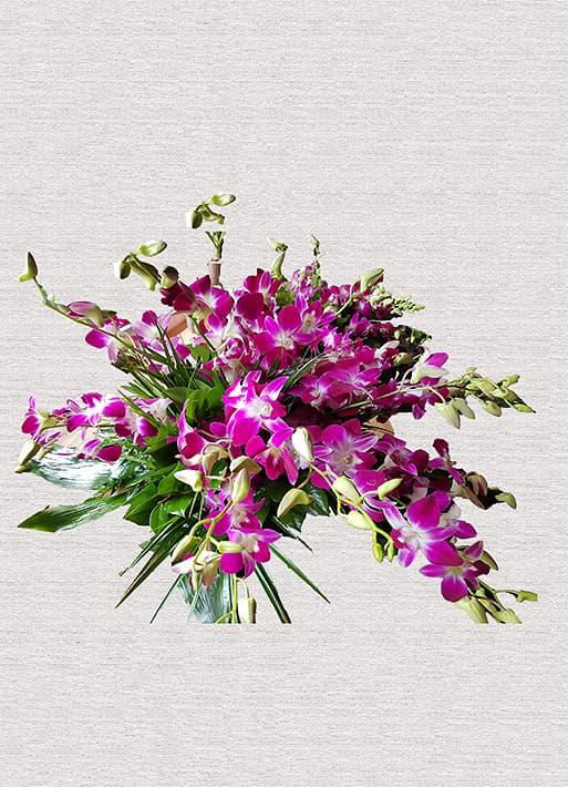 Buchet pentru sicriu Orhidee